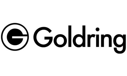 Logo Goldring